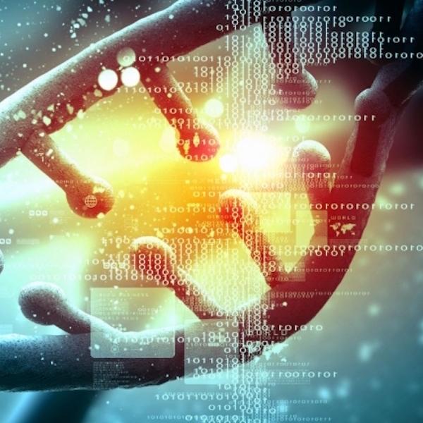 Impulsores genéticos: La tecnología 'Frankenstein' capaz de extinguir especies