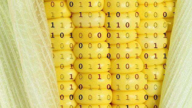 Monsanto y sus nuevas estrategias para el control de la alimentación mundial: el #BigData