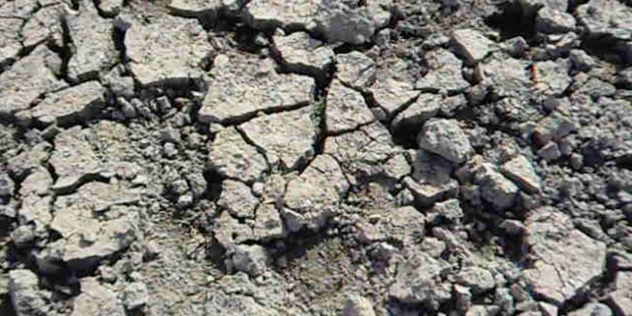 Ante la sequía, Tejerina empuja a endeudarse a un campo sediento de ayudas directas