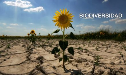 Así nos afecta el cambio climático: Casi el 75% del territorio español está en riesgo de convertirse en un desierto a finales de siglo