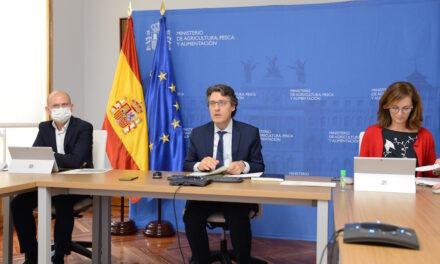 Agricultura impone 257 sanciones por 323.000 € hasta junio: El 64% al sector hortofrutícola, según informe de AICA