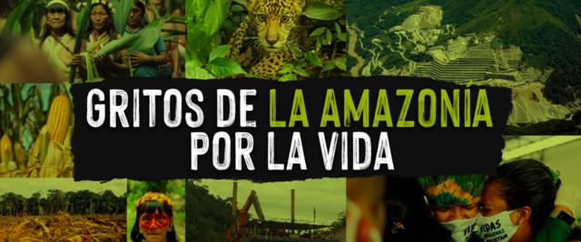 Movilización mundial por la Amazonia