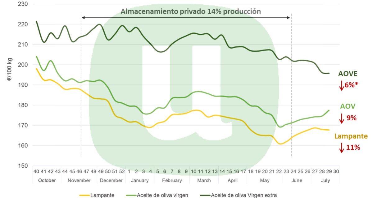 """La propuesta del Ministerio para la comercialización del aceite de oliva """"no solucionará la crisis y facilita la especulación"""", según la Unión"""