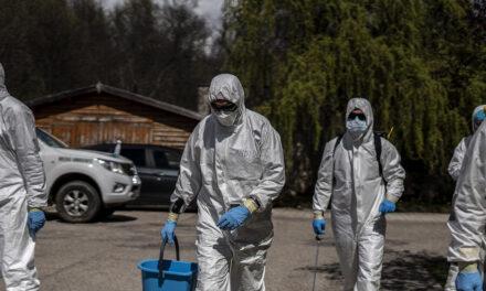 Las cuatro recetas de la OMS a los países para reabrir controlando la transmisión del coronavirus