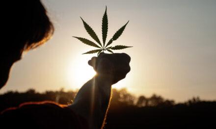 EEUU propone despenalizar la marihuana un día después de que la ONU la retire de la lista de estupefacientes donde figuraba junto a la heroína