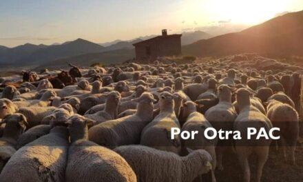 #POROTRAPAC: Gigantes agroalimentarios como Mercadona, Azucarera, Campofrío o Florette, entre los mayores beneficiarios en España de la PAC, según el Parlamento Europeo