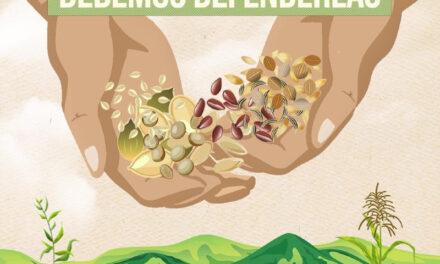 ¿Qué significa UPOV? El chiringuito para intentar apropiarse de las semillas del mundo