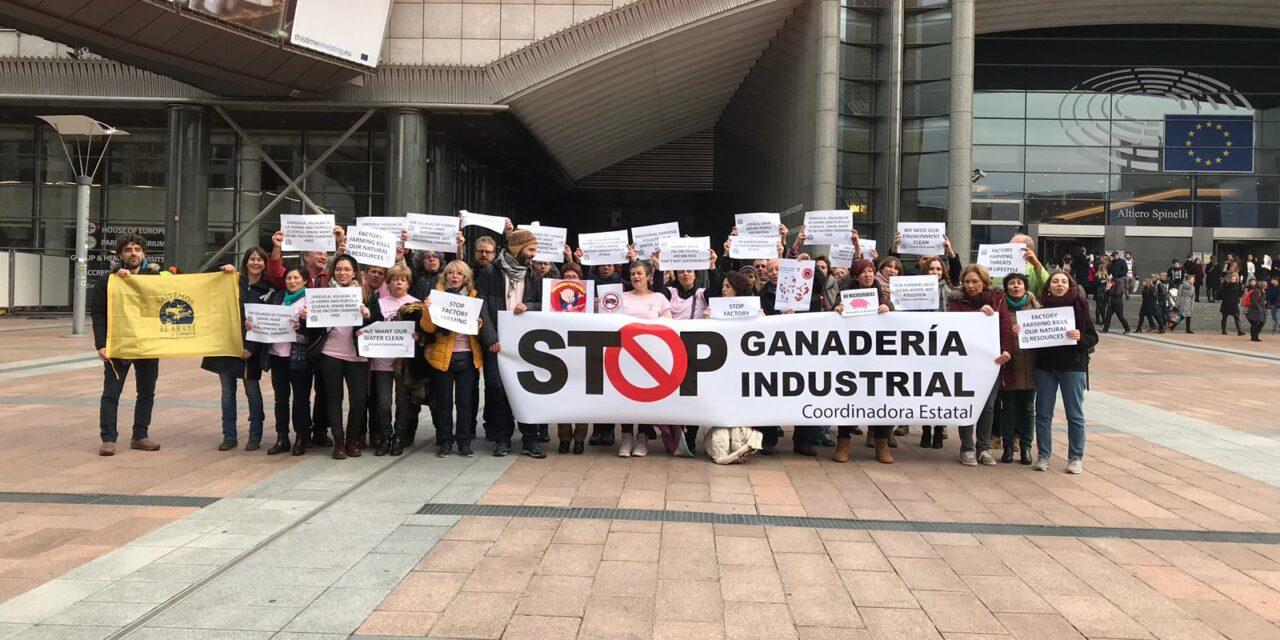 """Stop Ganadería Industrial: """"Se puede producir de forma más sostenible, sin que tus vecinos se tengan que ir y esté todo lleno de mierda y ruina"""""""