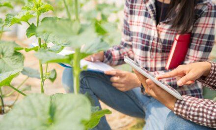 Emprendedores en el medio rural, una aventura que merece ser contada: Jornadas 'online' y gratuitas de la Red Rural Nacional