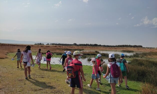 Más de un centenar de participantes en los talleres infantiles del medio rural de escuelas campesinas de Segovia
