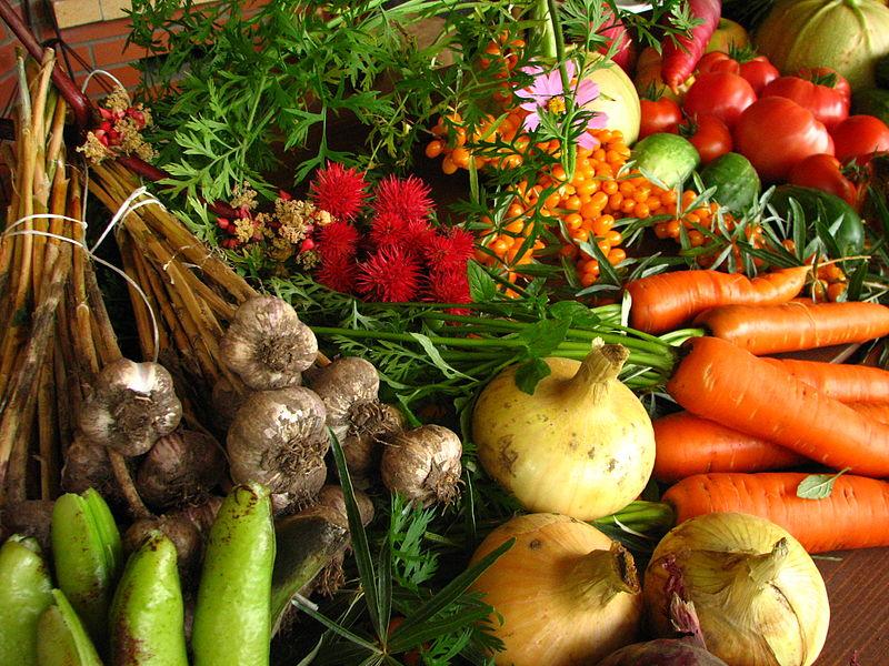 """EcoEsquemas PAC: """"Seguimos perdiendo una gran oportunidad para apoyar a todo el sector agrario en la transición agroecológica"""", según la Sociedad de Agroecología (SEAE)"""